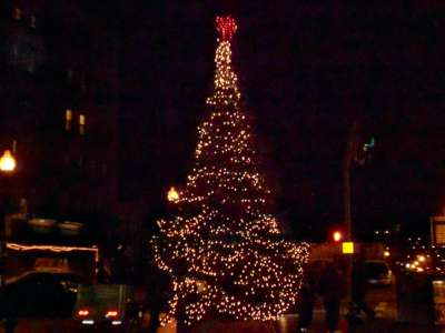 North End Christmas Tree
