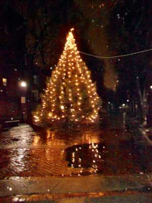 The Christmas Tree in The Prado