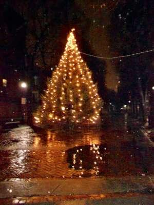 The Christmas Tree in The Prado